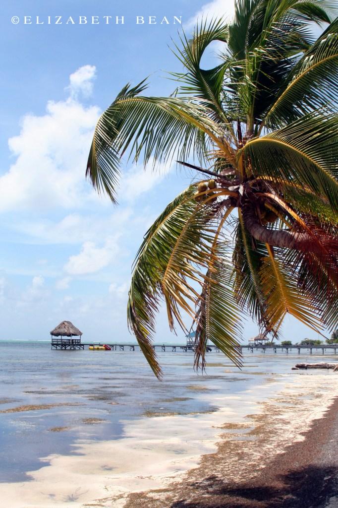 042907 Belize 14