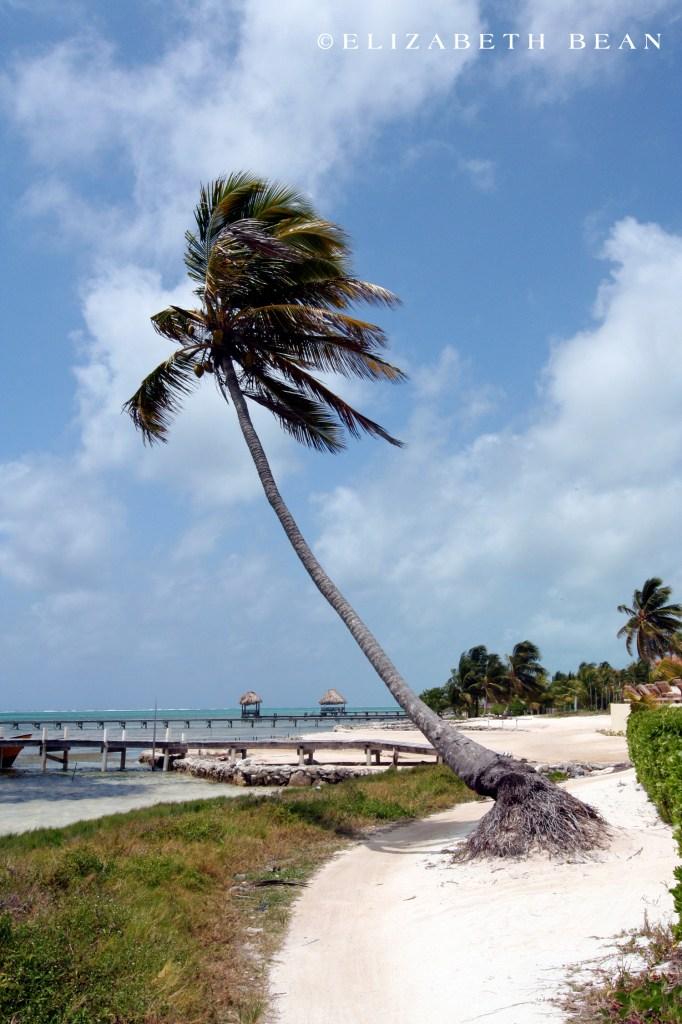 050407 Belize 18