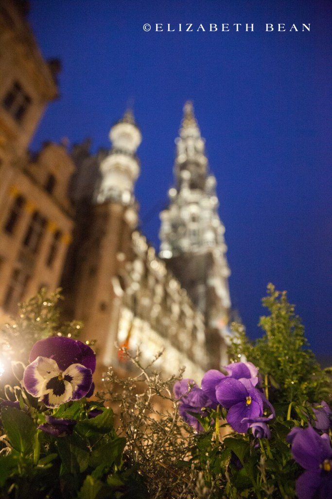 032915 Brussels 068