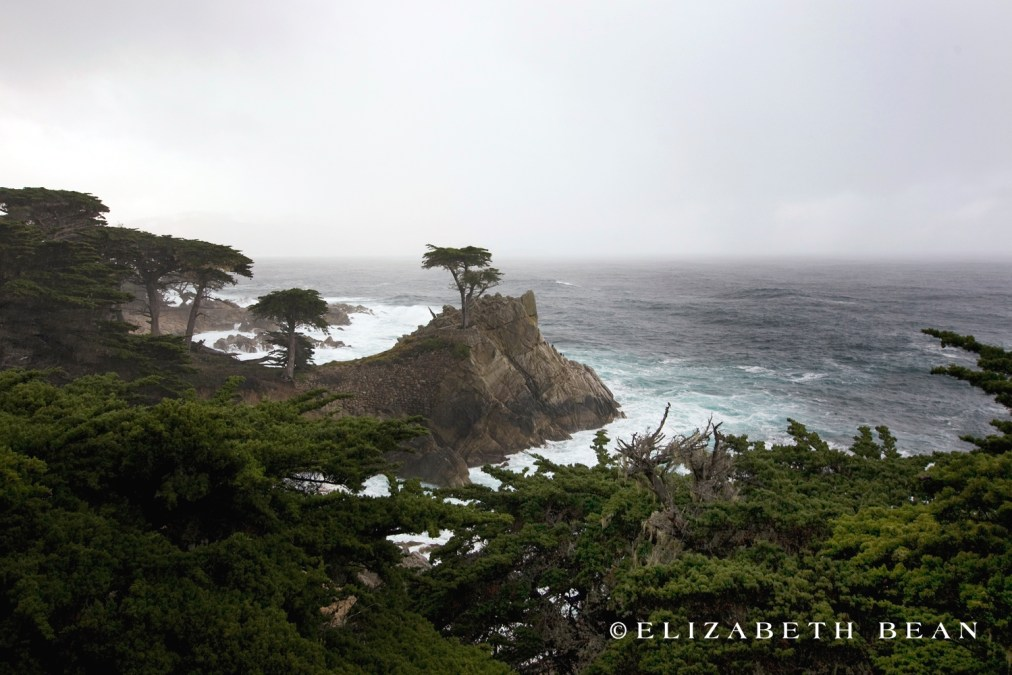 Monterey |2/10|