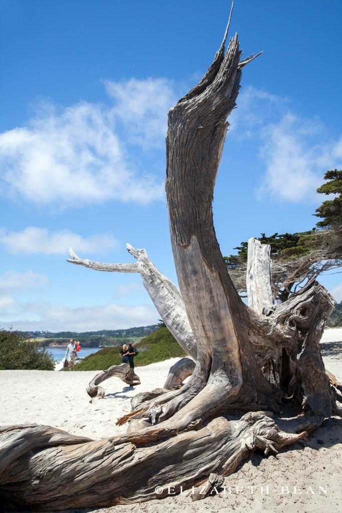 052813 Monterey 60
