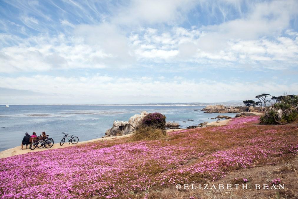 053115 Monterey 67