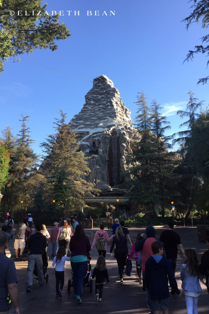 012916 Disneyland 15