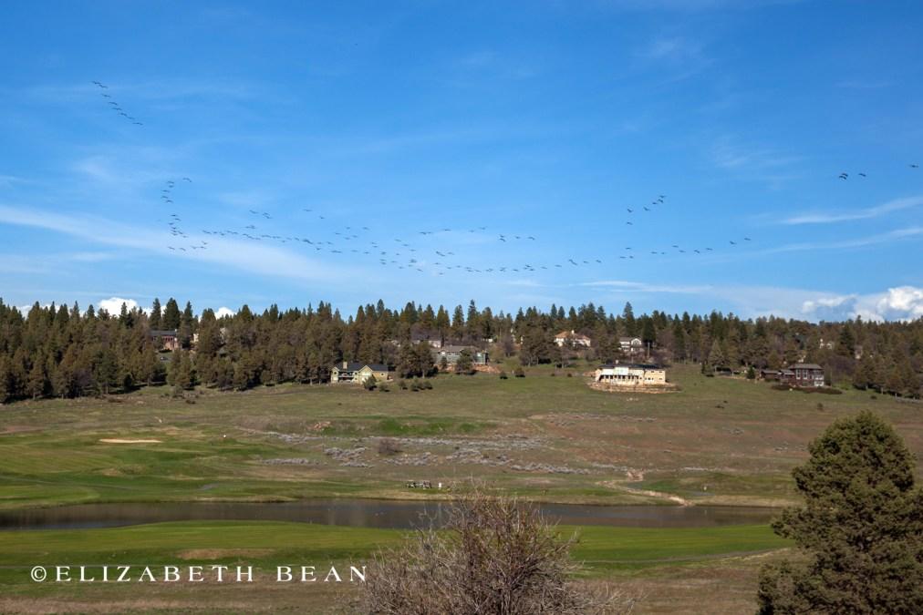 040816 Oregon Klamath 44