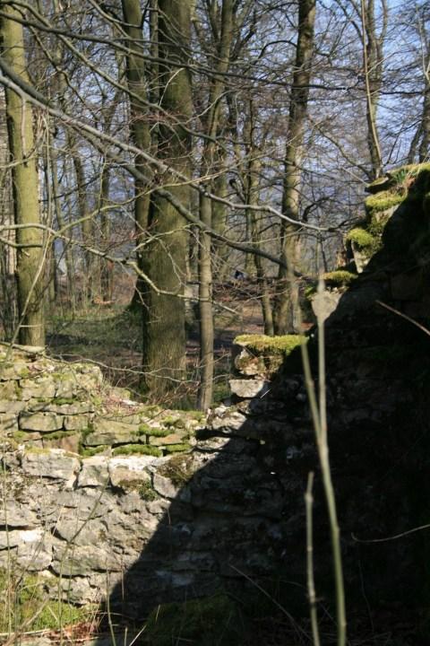 Iburg Driburg Burgruine Ostwestfalen