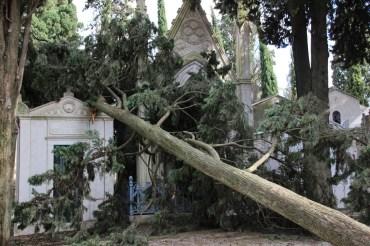 Cemiterio dos Prazeres – Friedhof der Vergnügen, Lissabon