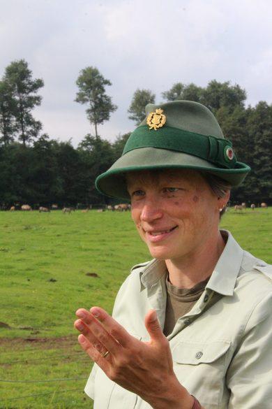 Wildpferde-Dülmen-Merfelder-Bruch-Führung