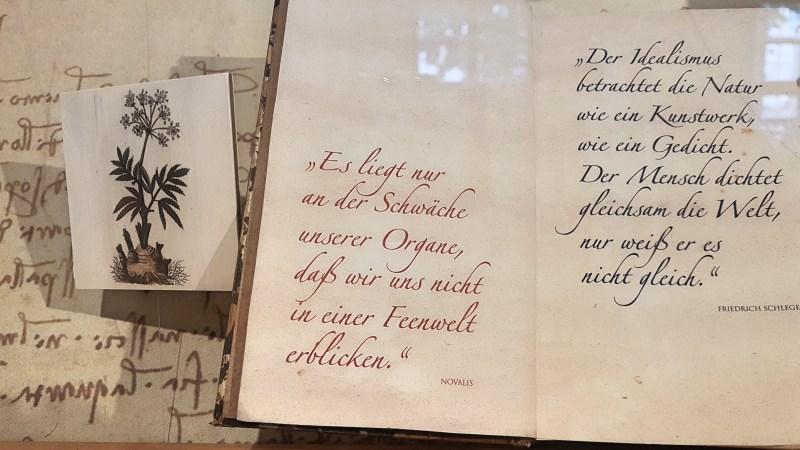 Zitat von Novalis, Novalis Haus in Jena, Weißenfels