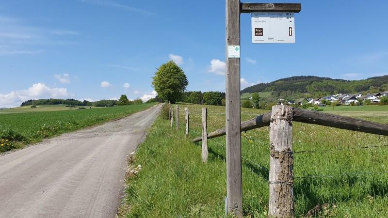 Wandern im Sauerland, Wanderwege Willingen