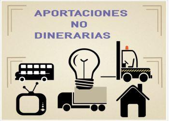 Aportaciones no dinerarias