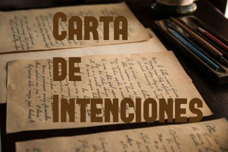 carta de intenciones