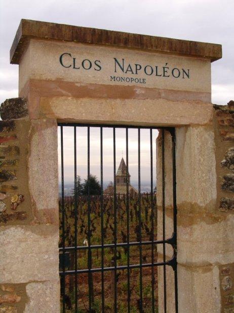 The Clos Napoléon - Fixin 1er Cru