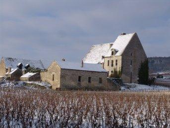 Chassagne Clos de l'Abbaye