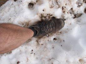 snow-foot