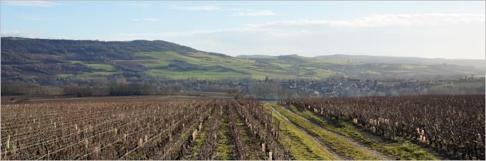 looking-to-cheilly-over-clos-roussots