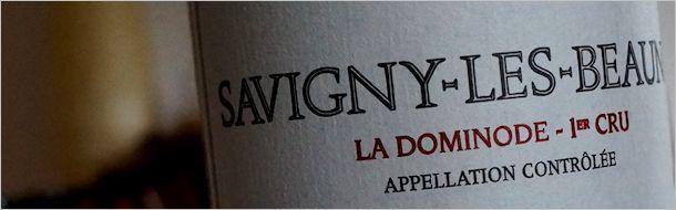pavelot-1997-savigny-dominode