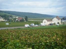 Towards Morey from Aligote vines