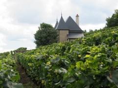 Ponsot Petite Maison top of Morey Monts Luisants
