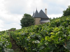 Ponsot Petite Maison top of Morey Monts Luisants