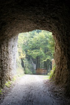 Switzerland's first tunnel from 1839 (If I remember...)