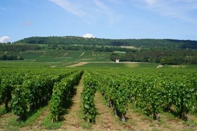 Au Paupillot towards La Garenne