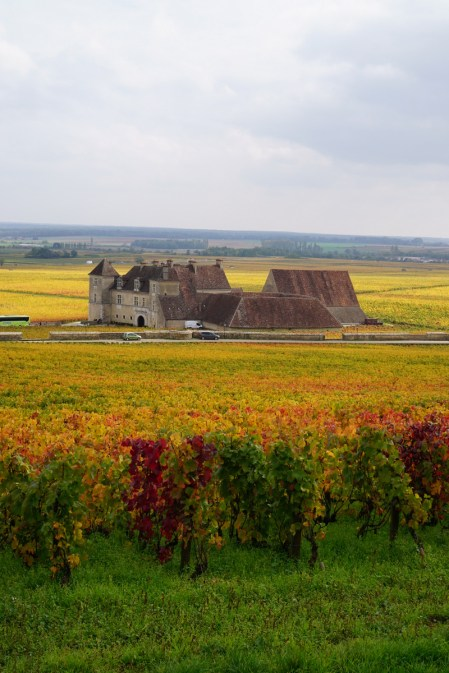 Clos de Vougeot with half a green bus