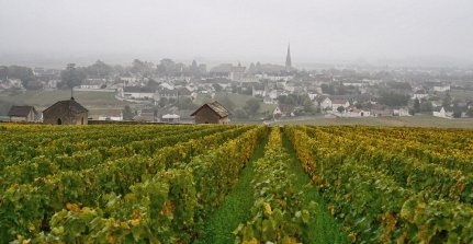 Over Tessons towards Meursault...