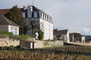 Domaine of the silver snowman (Chassagne)