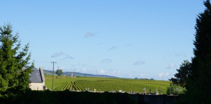 Puligny towards Meursault