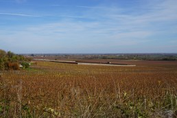 In the distance, the Clos des Perrières