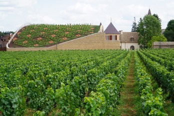 Boisset's winery