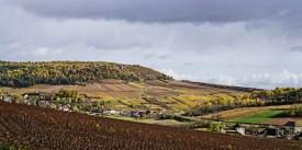 The St.Aubin vines on the hillside above Gamay