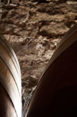 Cellar of Comte Liger-Belair