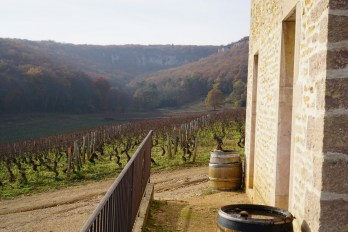 From Clos des Varoilles into the Combe de Lavaux