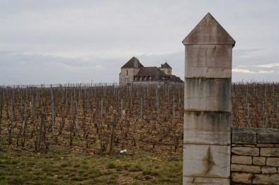 Clos Blanc de Vougeot, towards Château de La Tour