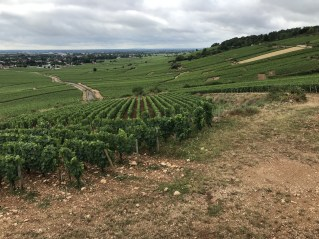 Over Bressandes and Tuissants to Beaune