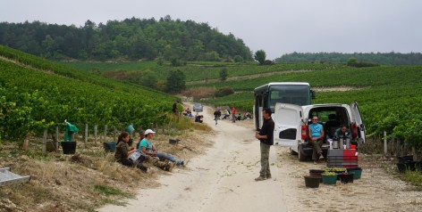 Team Drouhin, lunch pause in Vaudésir...