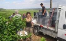 Damian on Arlaud camion Vosne Petit-Monts