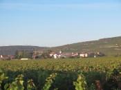 Vosne from RN74 Roadside Vosne Village plot 11092018
