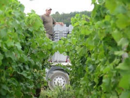 Yann-on-camion-above-Charmes-Chambertin