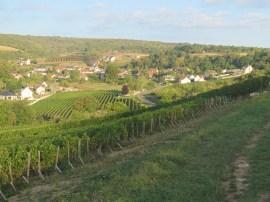 Top of slope2 towards Arcenant Hautes-Cotes Chard 12092018