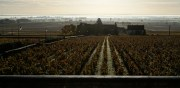 volnay, chassagne, santenay and even maranges…