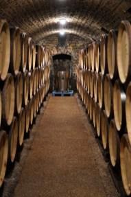 Cellar 2 - Vosne