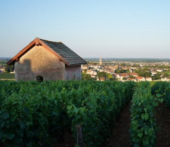 The view to Meursault from Tessons...