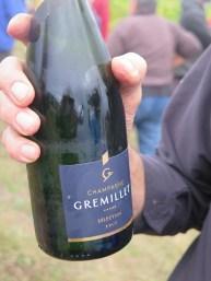 Conclusion of vendange in vines refreshment