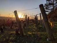 Les Clos sunset
