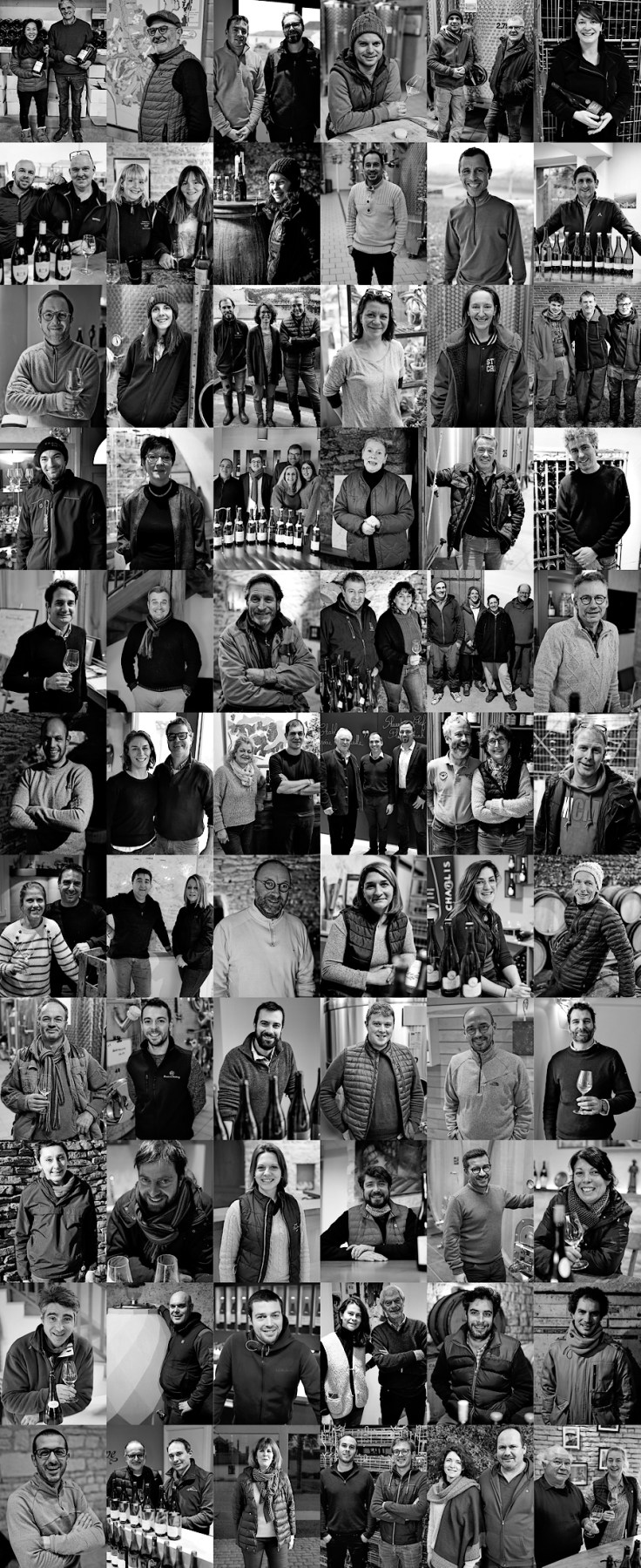 2019 Chablis - 66 producers