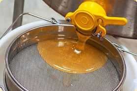 Image result for Filter the Honey