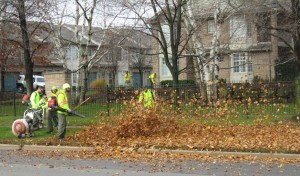 This crew will probably not be clearing the leaves from your property. They were working along New Street when this picture was taken.