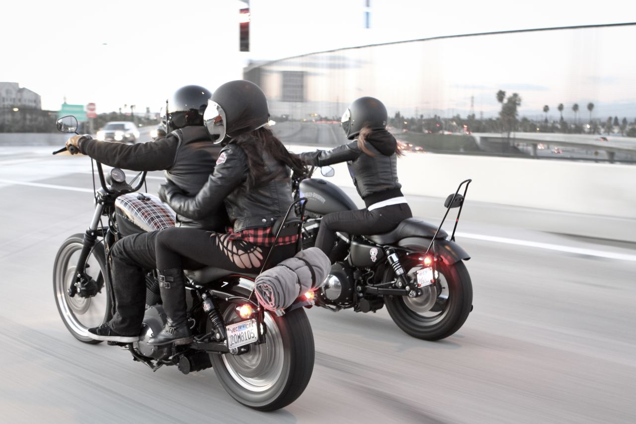 2010 Harley Davidson Dyna Street Bob Fxdb
